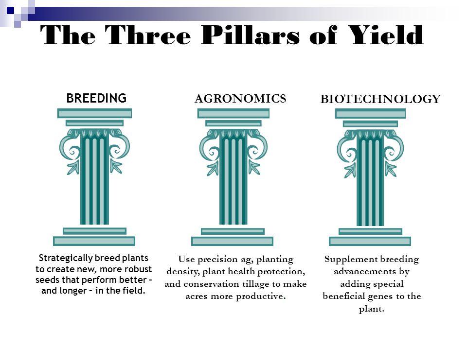 three pillars of sustainability pdf