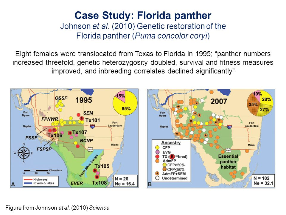 case study 1 west florida This feature is not available right now please try again later.