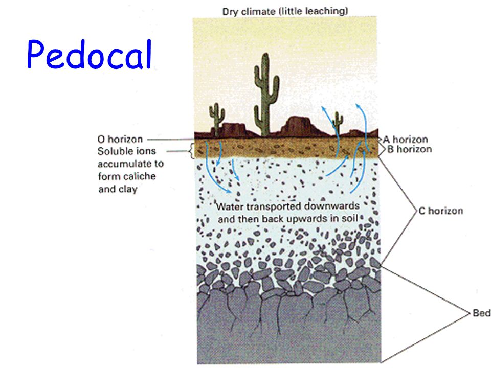 Soils soil formation the results of weathering ppt for Soil and its formation