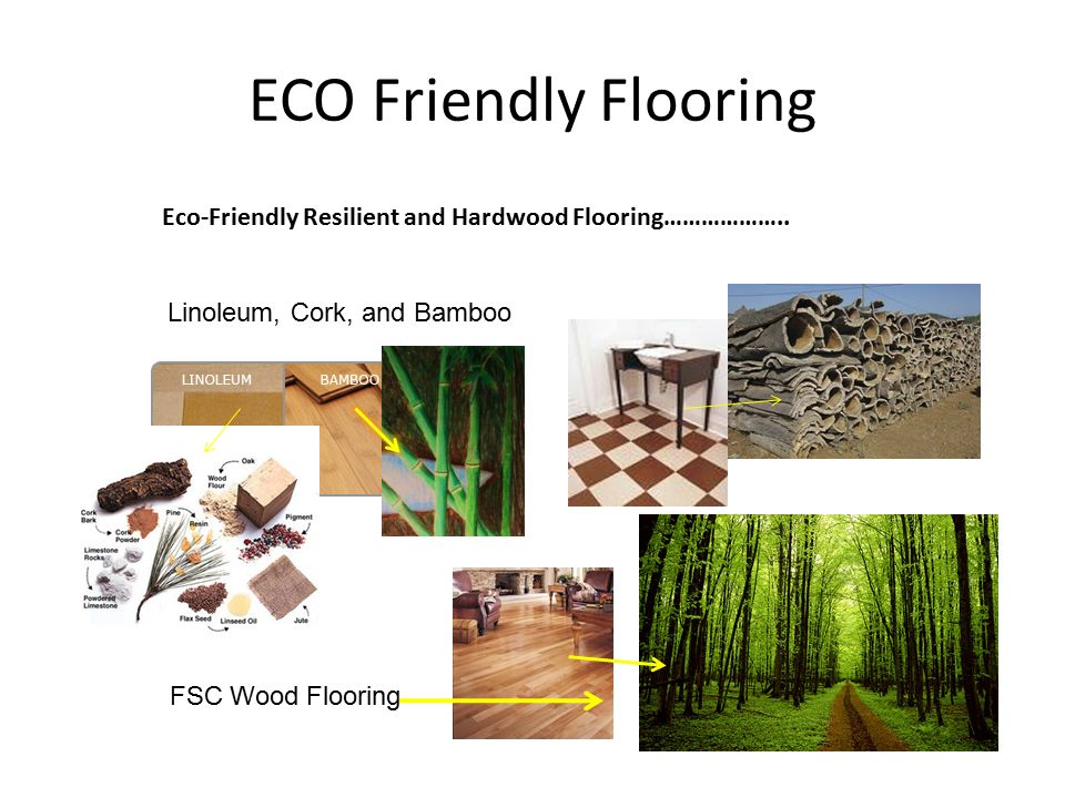 Eco friendly interiors ppt video online download for Eco friendly flooring