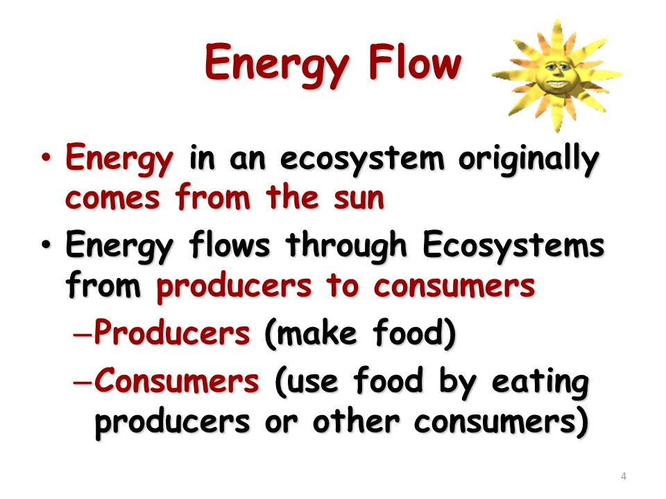 a discussion on the ecosystems as energy flow systems Ecosystems consist of communities of interdependent organisms and biotic components of the environment matter and energy flow through those systems (acssu176) resources assignment_-_energy_flow_in_a_backyard_ecosystemdocx.