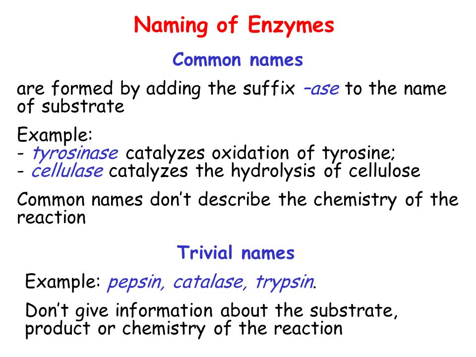 Classification Of Enzymes Units Of Enzyme Activity Ppt Download