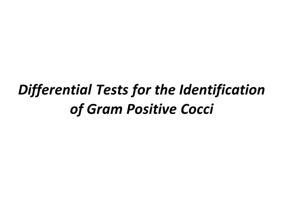 identifying gram positive cocci Violet stained gram-positive cocci and pink stained gram-negative rod-shaped bacteria gram-positive bacteria are bacteria that give a positive result in the gram.
