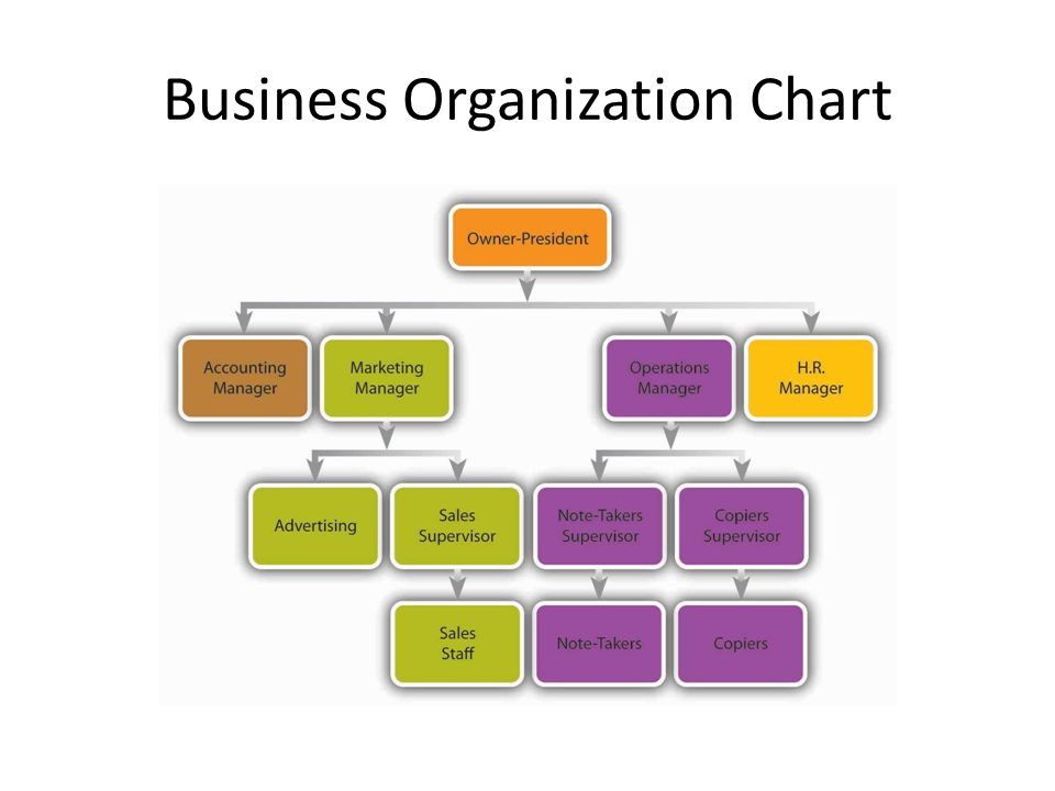 Business Organization - Ppt Video Online Download