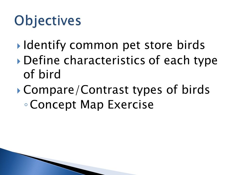 compare and contrast dogs and birds Results 1 - 20 of 1980  stellaluna venn diagram bats and birds compare contrast  venn diagram  worksheet: compare and contrast cats and dogs includes.
