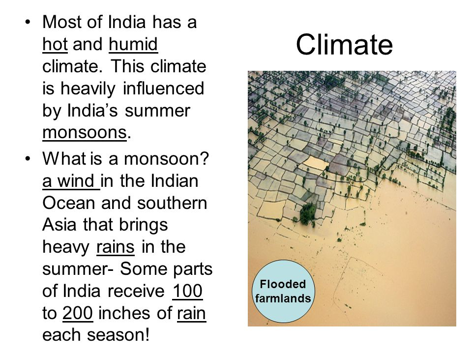 Most of India has a hot and humid climate