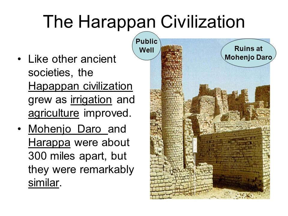 The Harappan Civilization