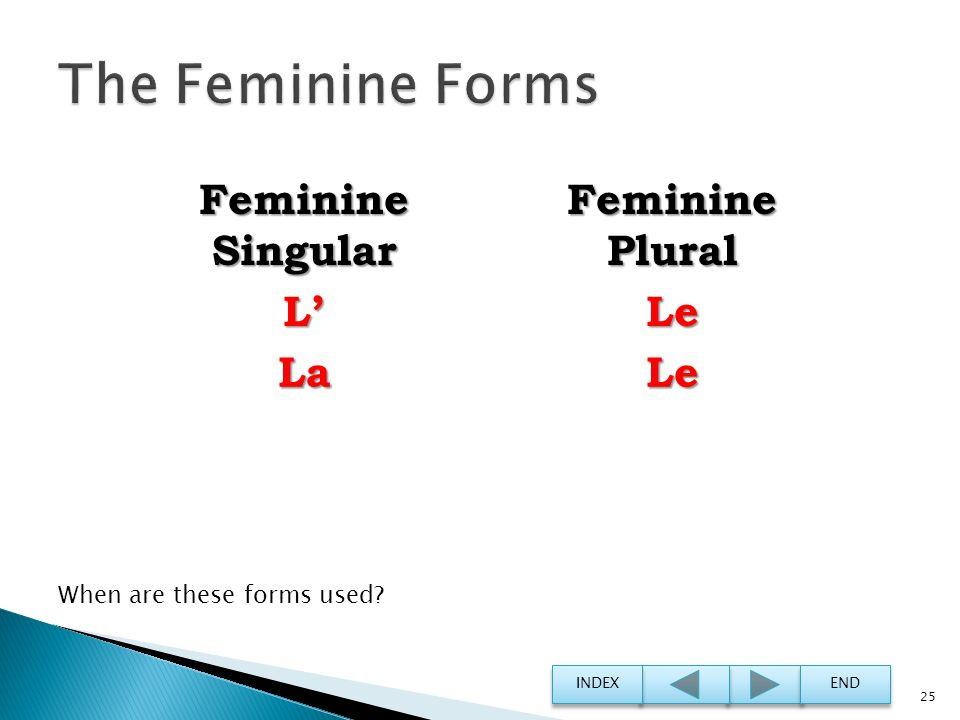 The Feminine Forms Feminine Singular Feminine Plural L' Le La