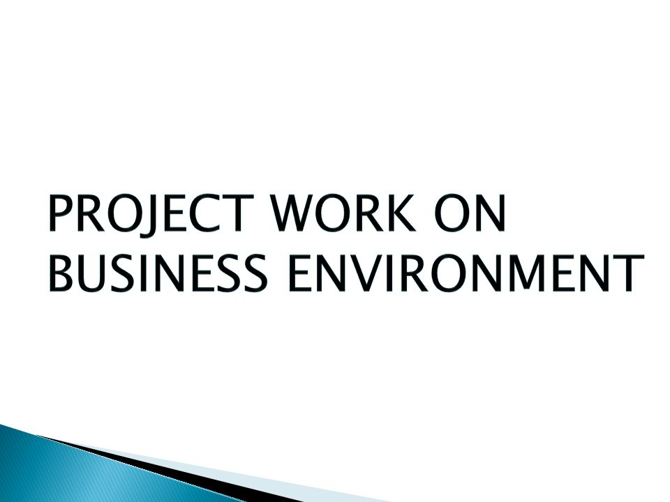 project work on business environment