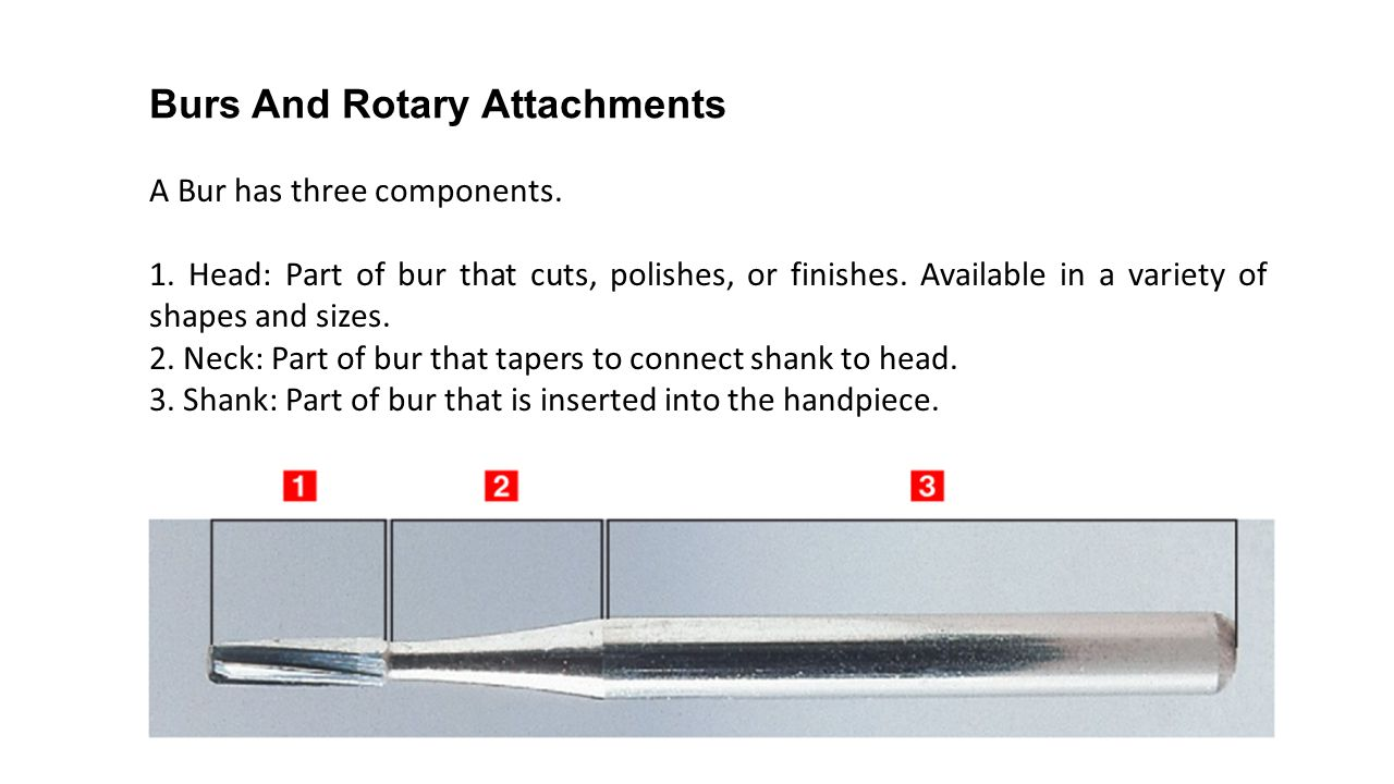 Burs And Rotary Attachments
