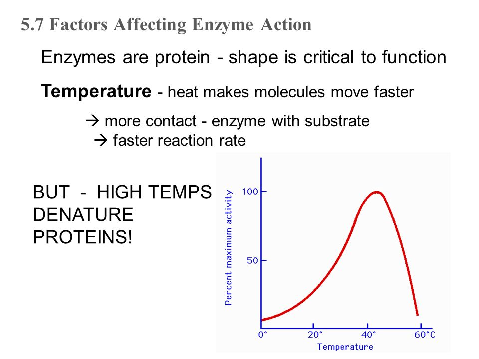 discovering factors affecting protein denaturation If the desire is to analyse or discover interacting proteins by western blot or mass   sds elution for denaturing gels, western blots, or mass spectrometry:   spectral abundance factor (nsaf) values for known interactors of.