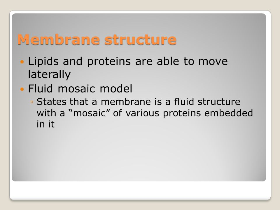 Membrane Structure & Function - ppt download
