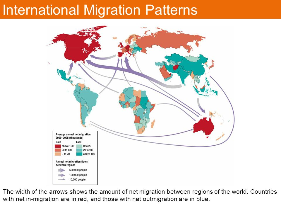 difference between immigration ad migration