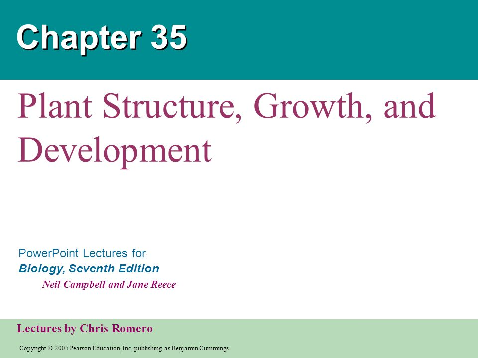 plant structure growth and development • plant structure, growth, & development • ch 35 • plants have organs composed of different tissues, which in turn are composed of different cell.