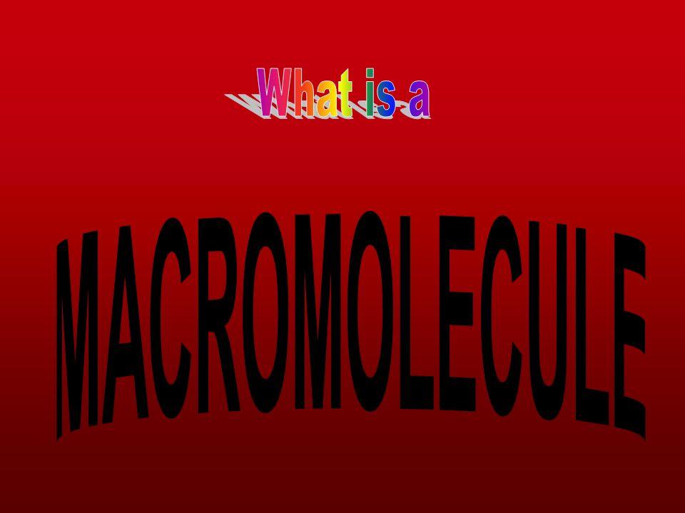 What is a MACROMOLECULE