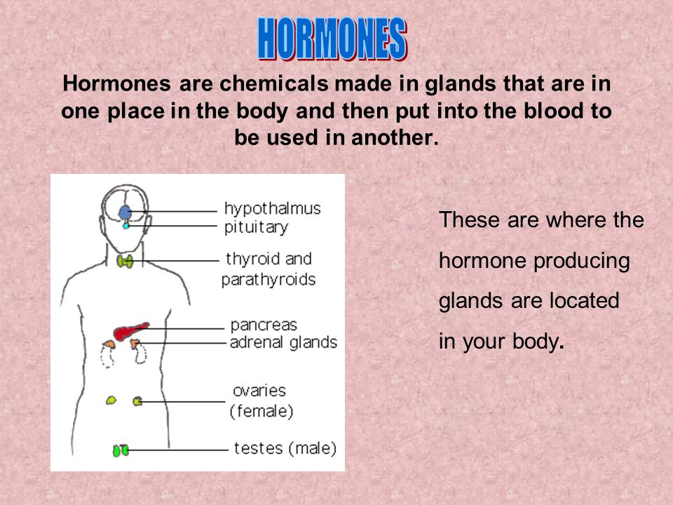 HORMONES Hormones are chemicals made in glands that are in one place in the body and then put into the blood to be used in another.