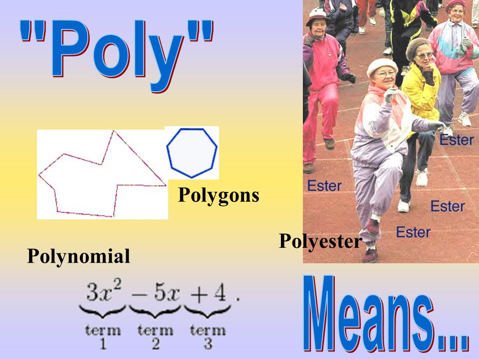 Poly Polygons Polyester Polynomial Means...