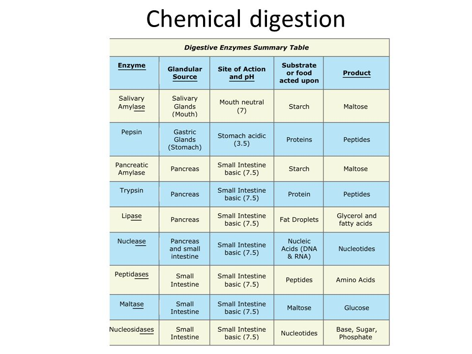 table of digestive enzymes and their functions pdf