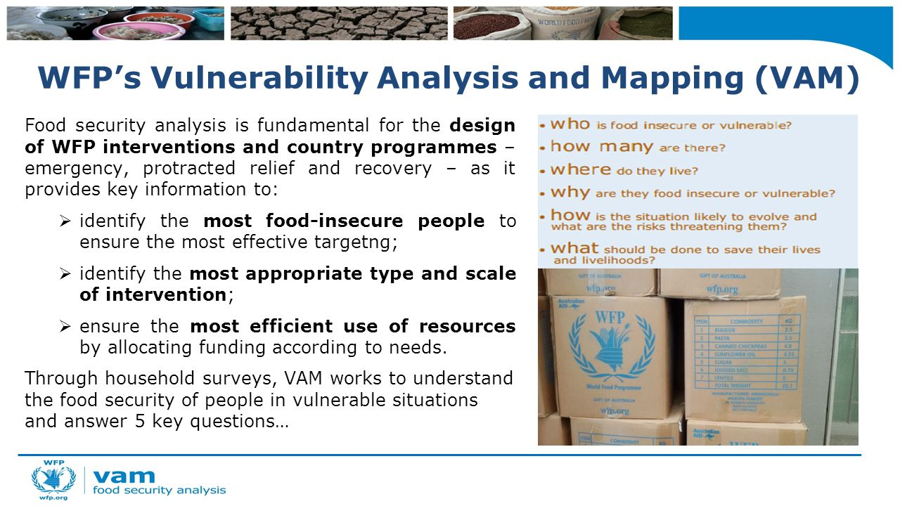 World food programme food security analysis mobile for Household survey questionnaire design