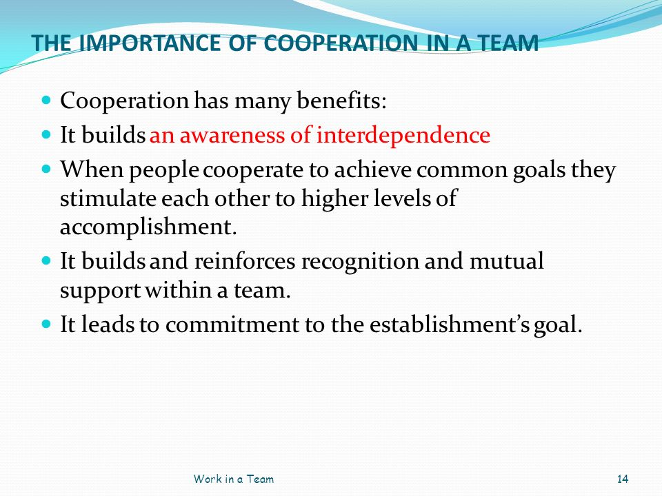 THE IMPORTANCE OF COOPERATION IN A TEAM