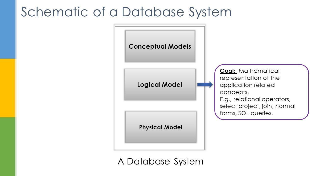 concepts of database systems In this article we discuss the types of database management systems.