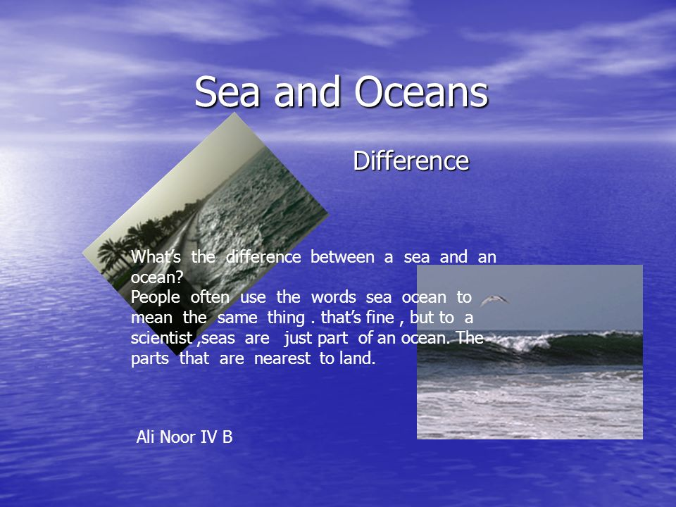 comparison between the ocean marine and 3 main differences between the ocean and the sea sponsors link a lot of people frequently use the terms 'sea' and 'ocean' interchangeably because they don't really know that both terms are different especially when speaking of geography.