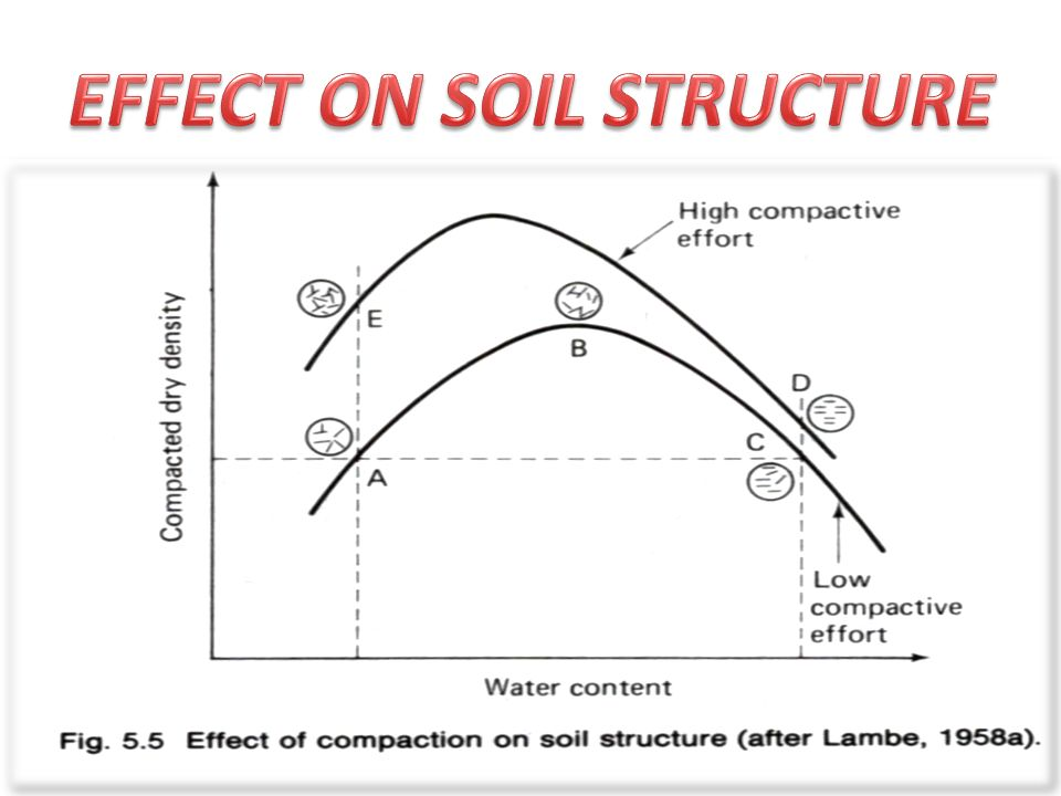 Module 3 compaction ppt video online download for Soil structure