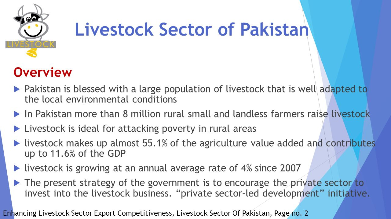 constraints in livestock sector in pakistan Country report: pakistan 1  agriculture is the single largest sector and driving force of pakistan economy in  constraints are felt most severely where water.