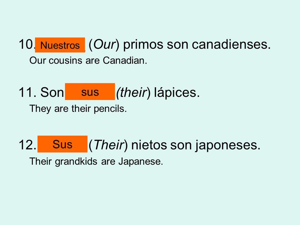 10. ______ (Our) primos son canadienses.