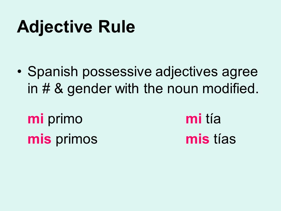 Adjective Rule Spanish possessive adjectives agree in # & gender with the noun modified. mi primo mi tía.