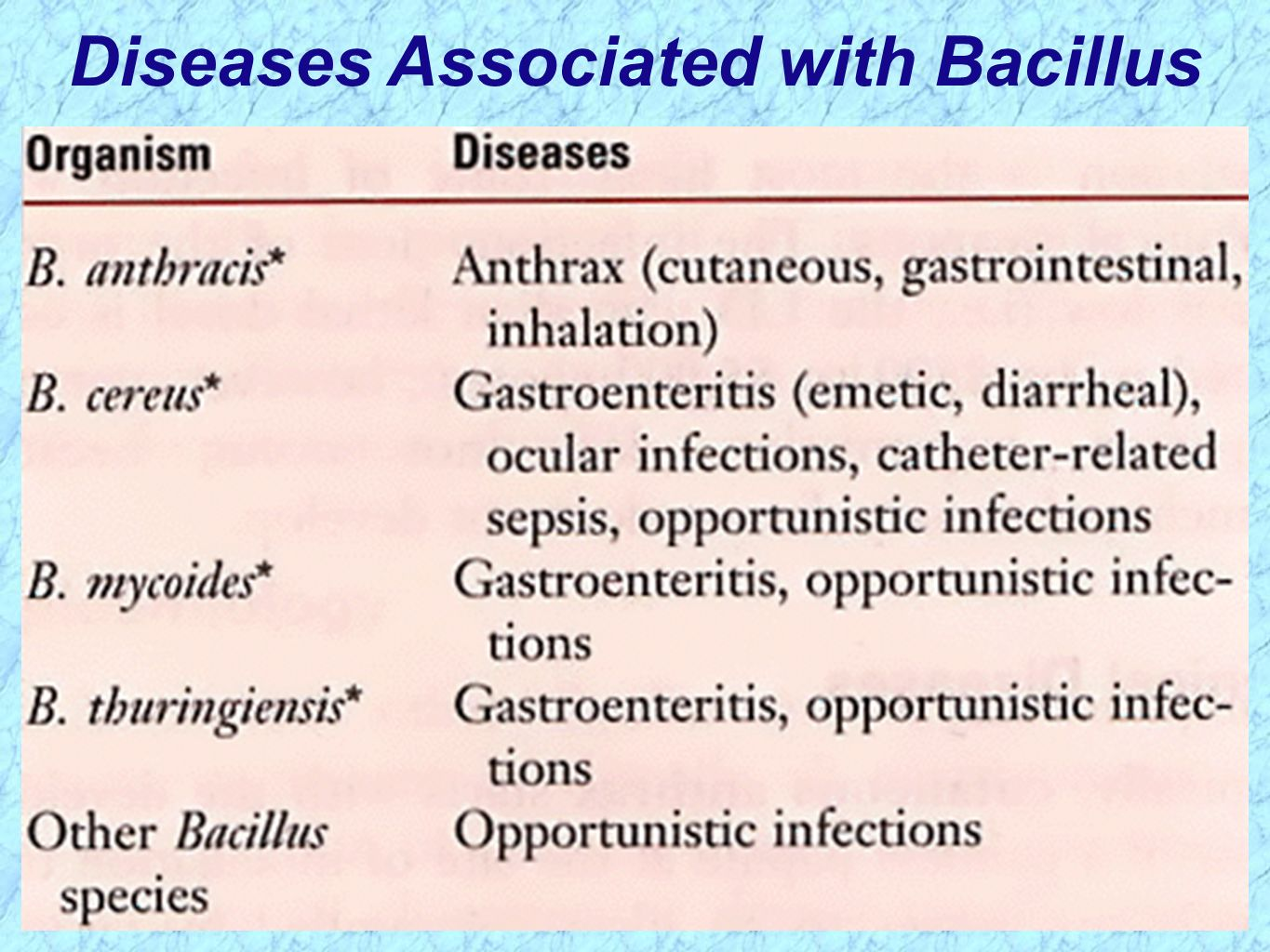 the basic characteristics of the anthrax 1) know the general characteristics of bacillus species (slide 3) and the key characteristics of the pathogens discussed, b anthracis and b cereus (slides 23 and 34).