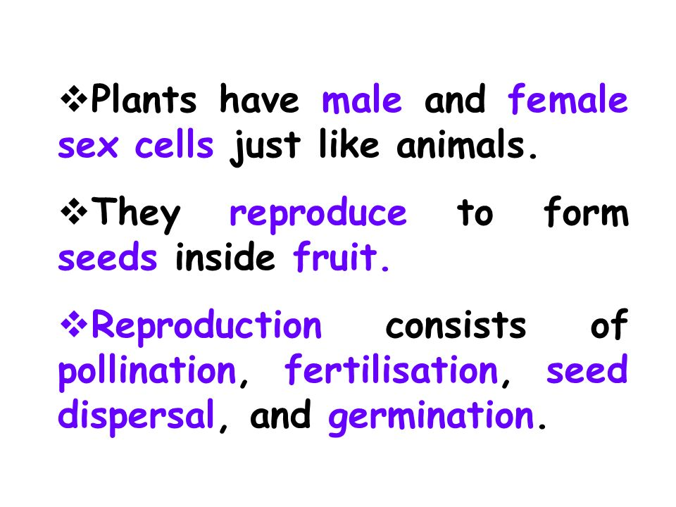 Plants have male and female sex cells just like animals.