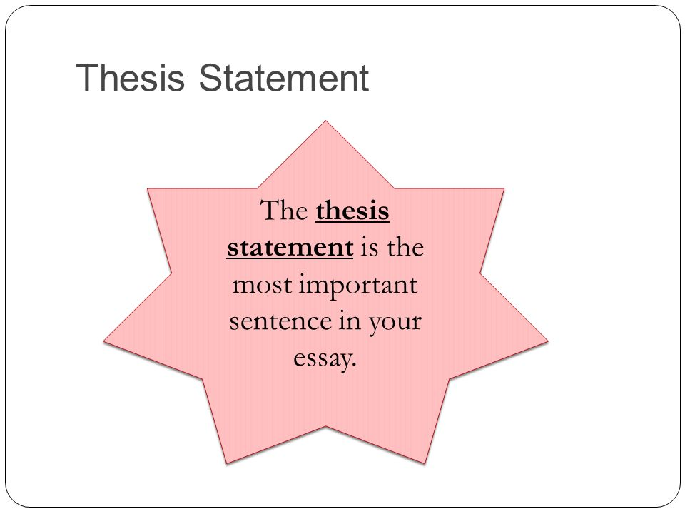 the is the most important sentence in your essay The is the most important sentence in your essay - instead of spending time in inefficient attempts, receive professional help here find common advice as to how to.