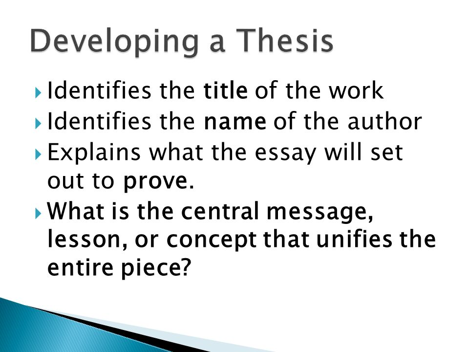 developing a thesis for an essay