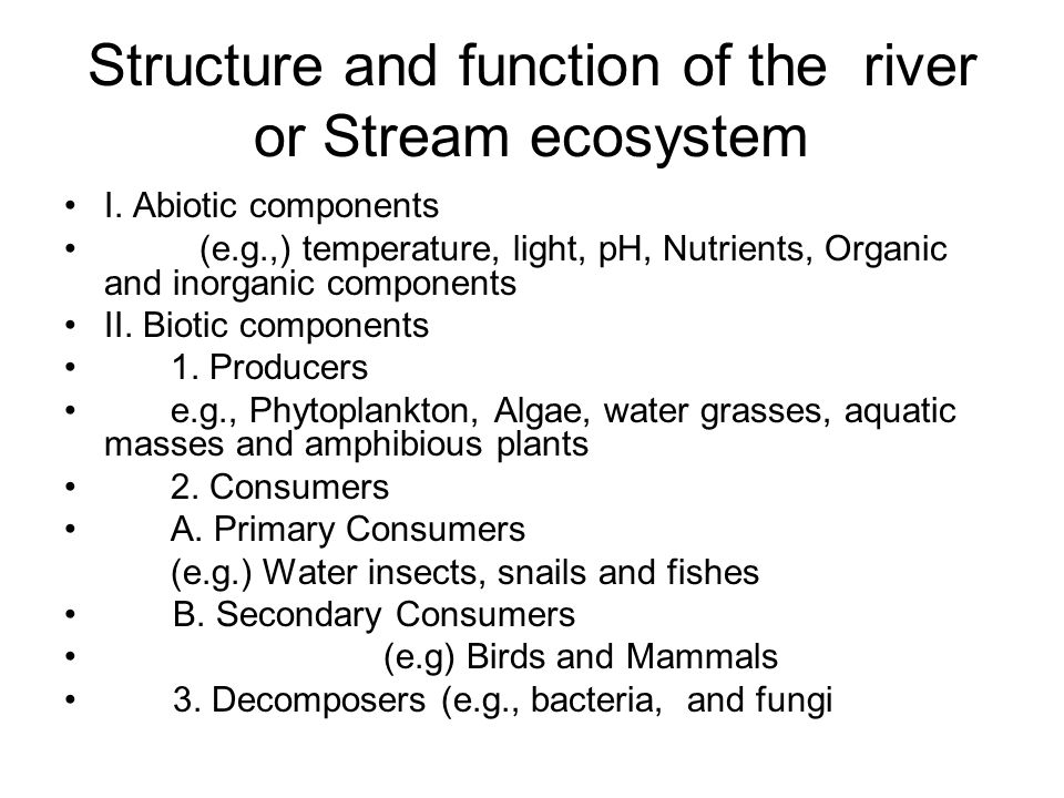 Structure and function of the river or Stream ecosystem