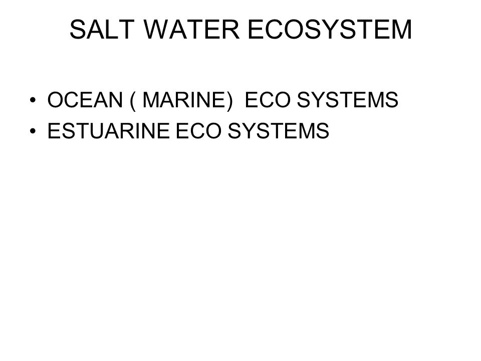SALT WATER ECOSYSTEM OCEAN ( MARINE) ECO SYSTEMS ESTUARINE ECO SYSTEMS