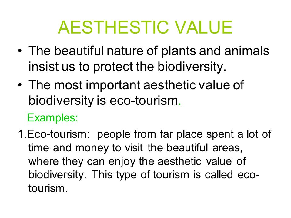 AESTHESTIC VALUE The beautiful nature of plants and animals insist us to protect the biodiversity.