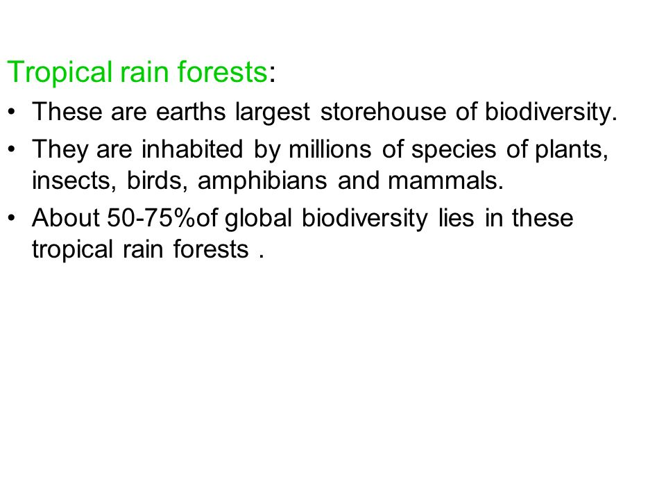 Tropical rain forests: