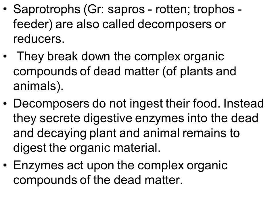 Saprotrophs (Gr: sapros - rotten; trophos - feeder) are also called decomposers or reducers.