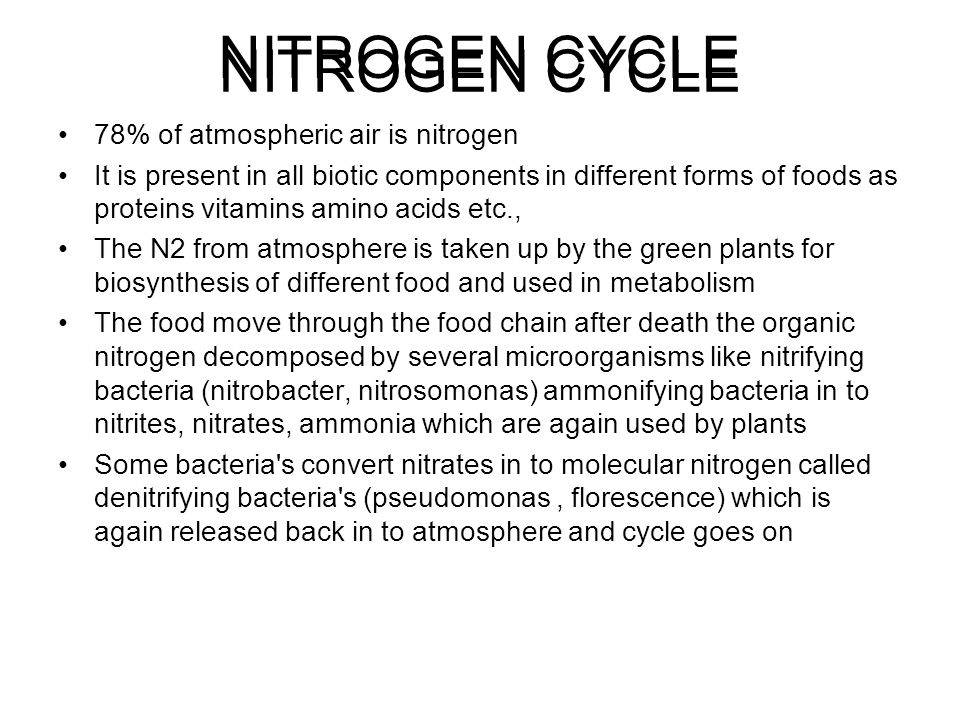 NITROGEN CYCLE NITROGEN CYCLE 78% of atmospheric air is nitrogen