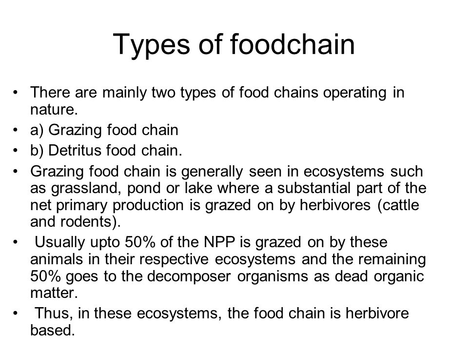 Types of foodchain There are mainly two types of food chains operating in nature. a) Grazing food chain.