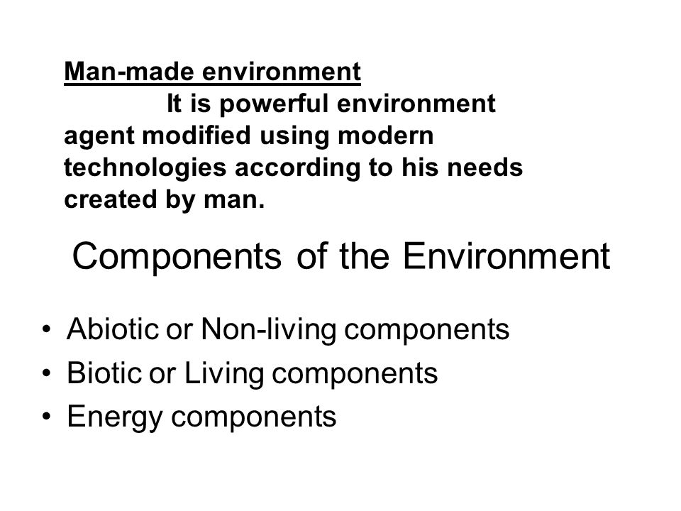 Components of the Environment