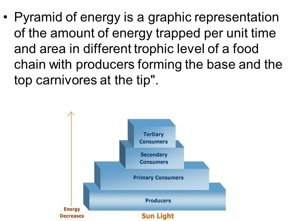 Pyramid of energy is a graphic representation of the amount of energy trapped per unit time and area in different trophic level of a food chain with producers forming the base and the top carnivores at the tip .