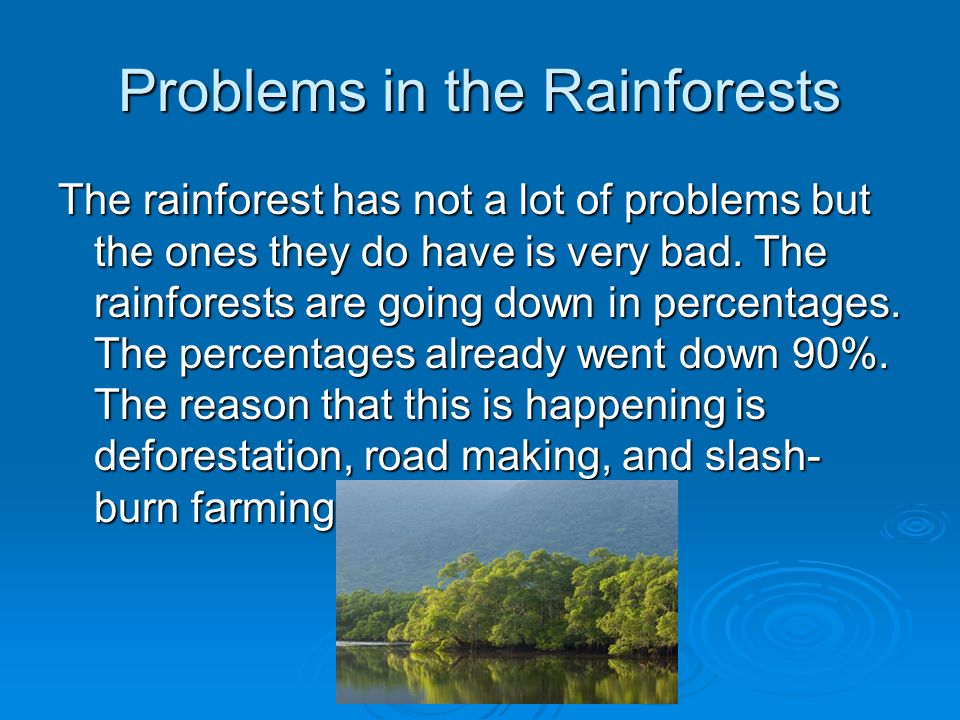 AFRICAN RAINFORESTS By: Megan Fisher. - ppt download