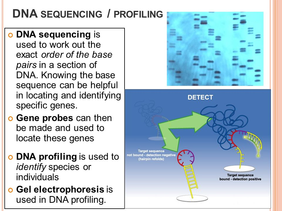 """dna profiling saves lives Indiana to collect dna from anyone arrested on felony charges starting in """"dna profiling is an the collection of dna upon felony arrest will save lives."""