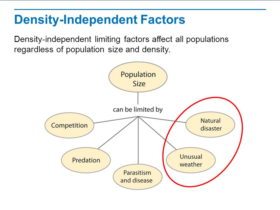 Limiting factor definition