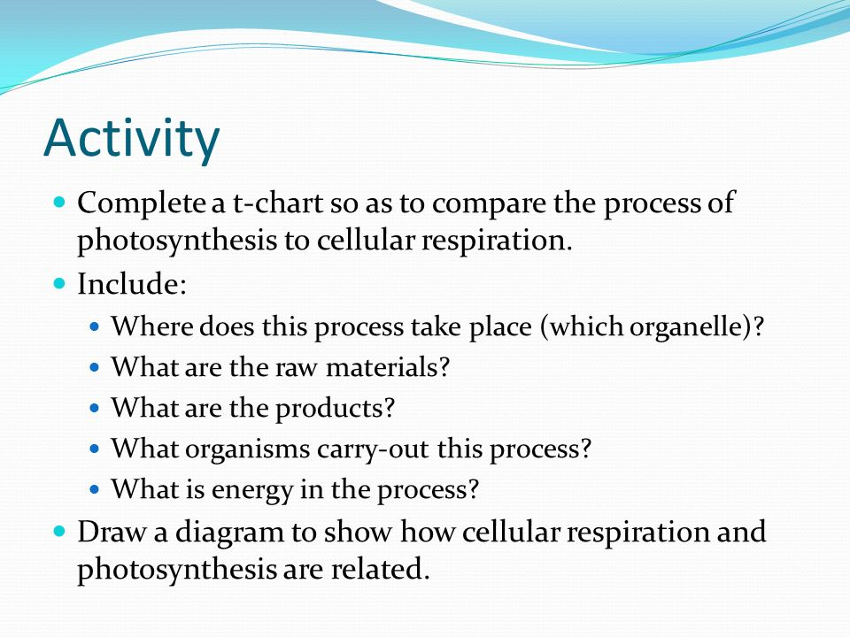 the process of respiration essay Essay # 1 definition of respiration: respiration is the process by which oxygen from the lungs is carried by the blood to the tissues and carbon dioxide formed in the tissues by metabolic activity is carried by the blood to the lungs and is expired out.