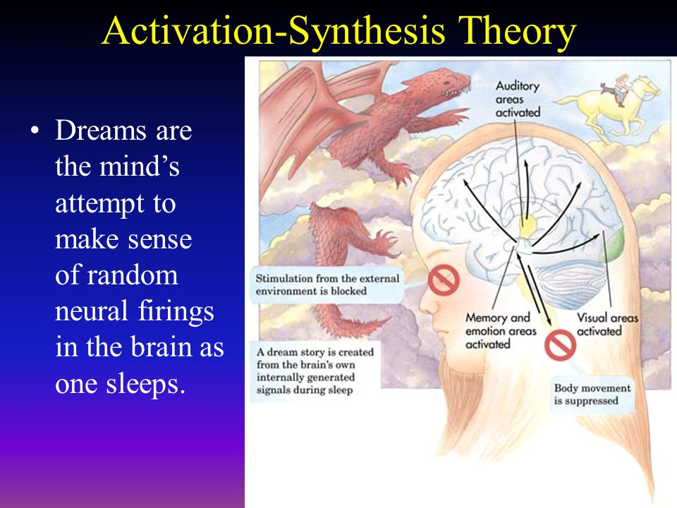 activation-sythesis theory These differences in the mode of division and sites for cell wall synthesis  the  difference between the structures suggests a possible activation mechanism for  pbps (112)  according to the surface stress theory, the wall which is laid down .