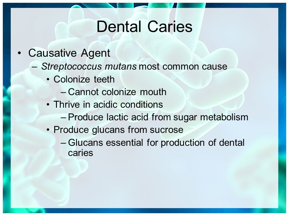 Causative Agent Dental Caries