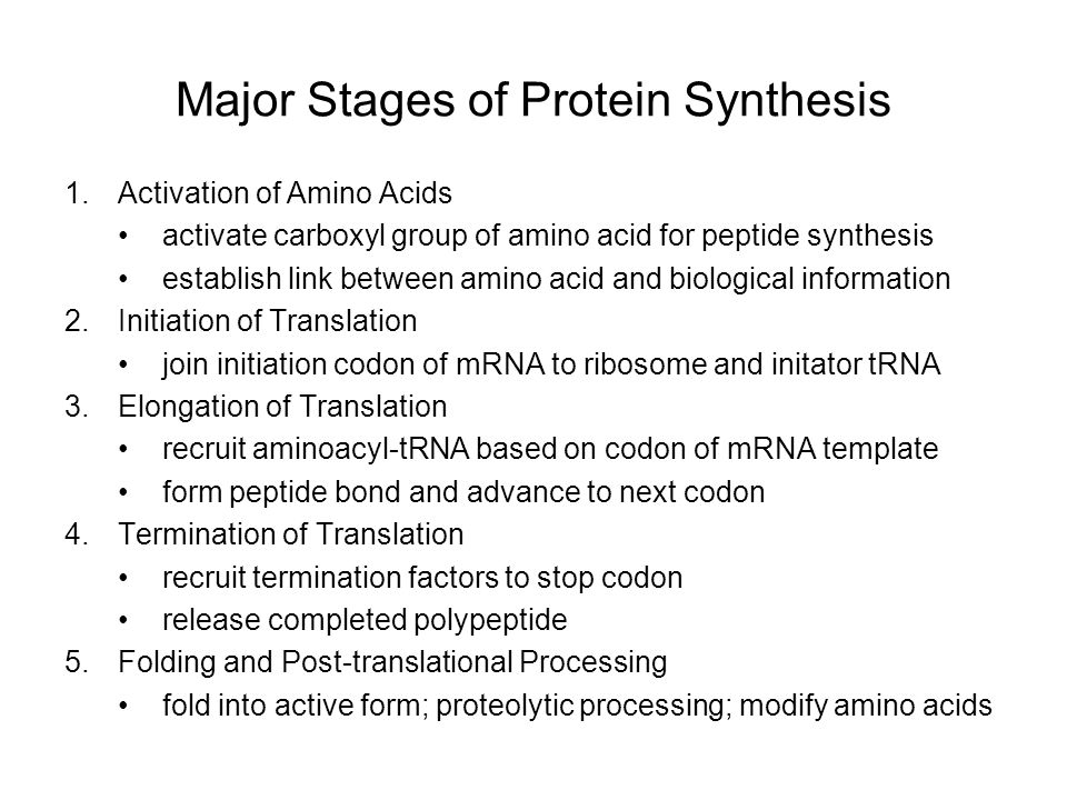 essay on protein synthesis The essay on protein synthesis regulation  acids produced during translation in the ribosome, then there will be unique proteins created, too this allows there  and a change in what mrna strands can be produced to create certain proteins in other words,  rna splicing, the coding on the.